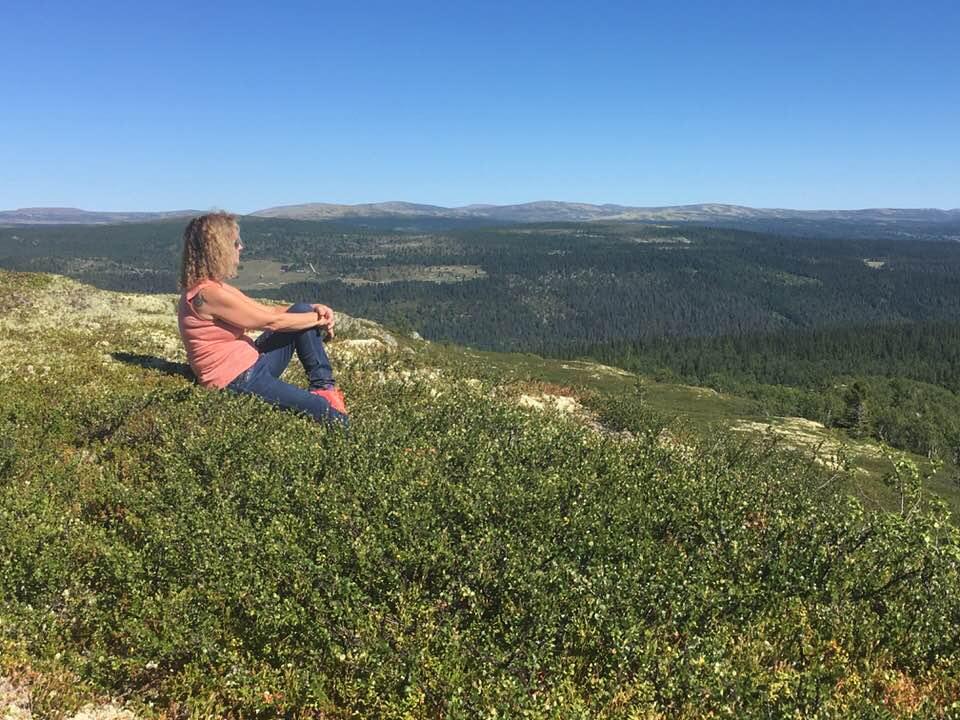 Sommer på Venabygdsfjellet
